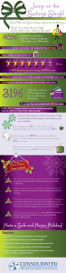 2012 Holiday Infographic